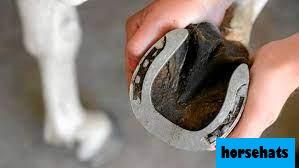 Fungsi Lain Sepatu Kuda yang Jarang Diketahui